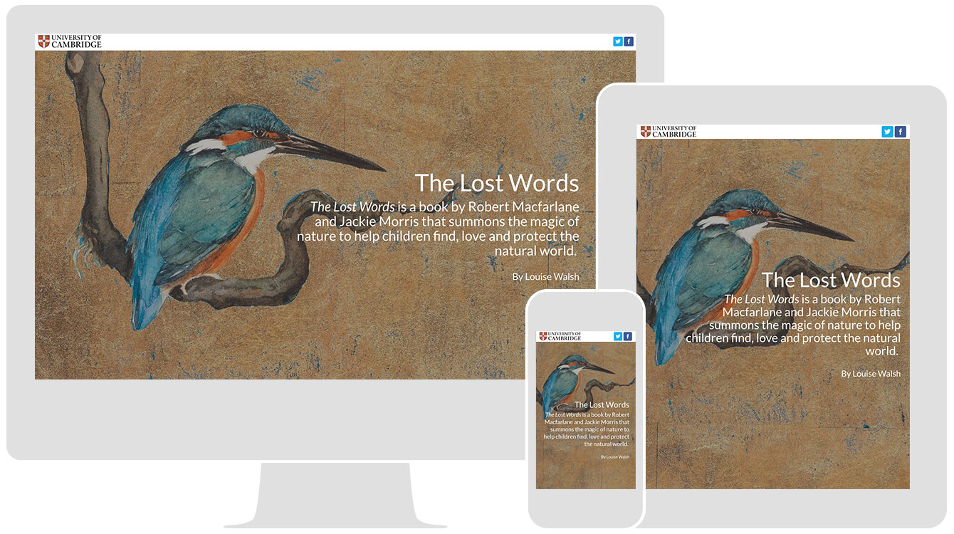 The Lost Words, by the University of Cambridge, renders responsively across all devices